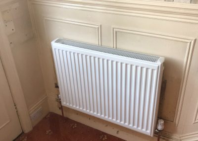 Heating and plumbing gallery - Standard modern white radiator - Freeflow heating and plumbing